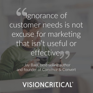 """""""Ignorance of customer needs is not excuse for marketing that isn't useful or effective"""" - Jay Baer, best-selling author and founder of Convince & Convert"""